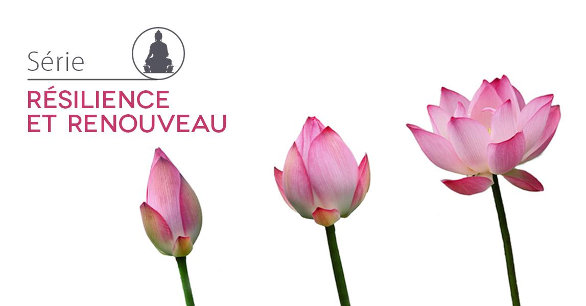 Compassion et sagesse bouddhiste